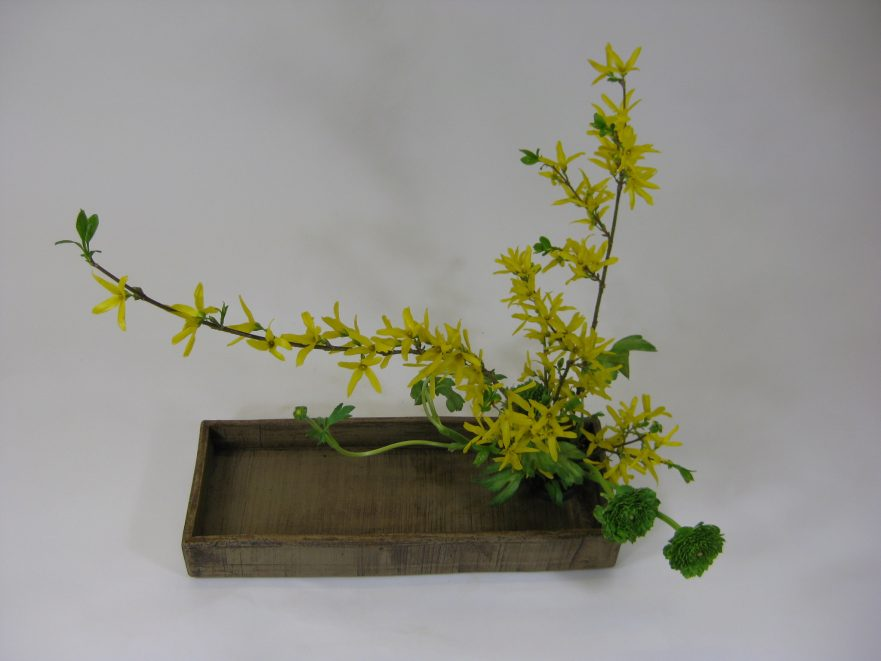 Ikebana, Sogetsu, Moribana (von Eugen Rausch)