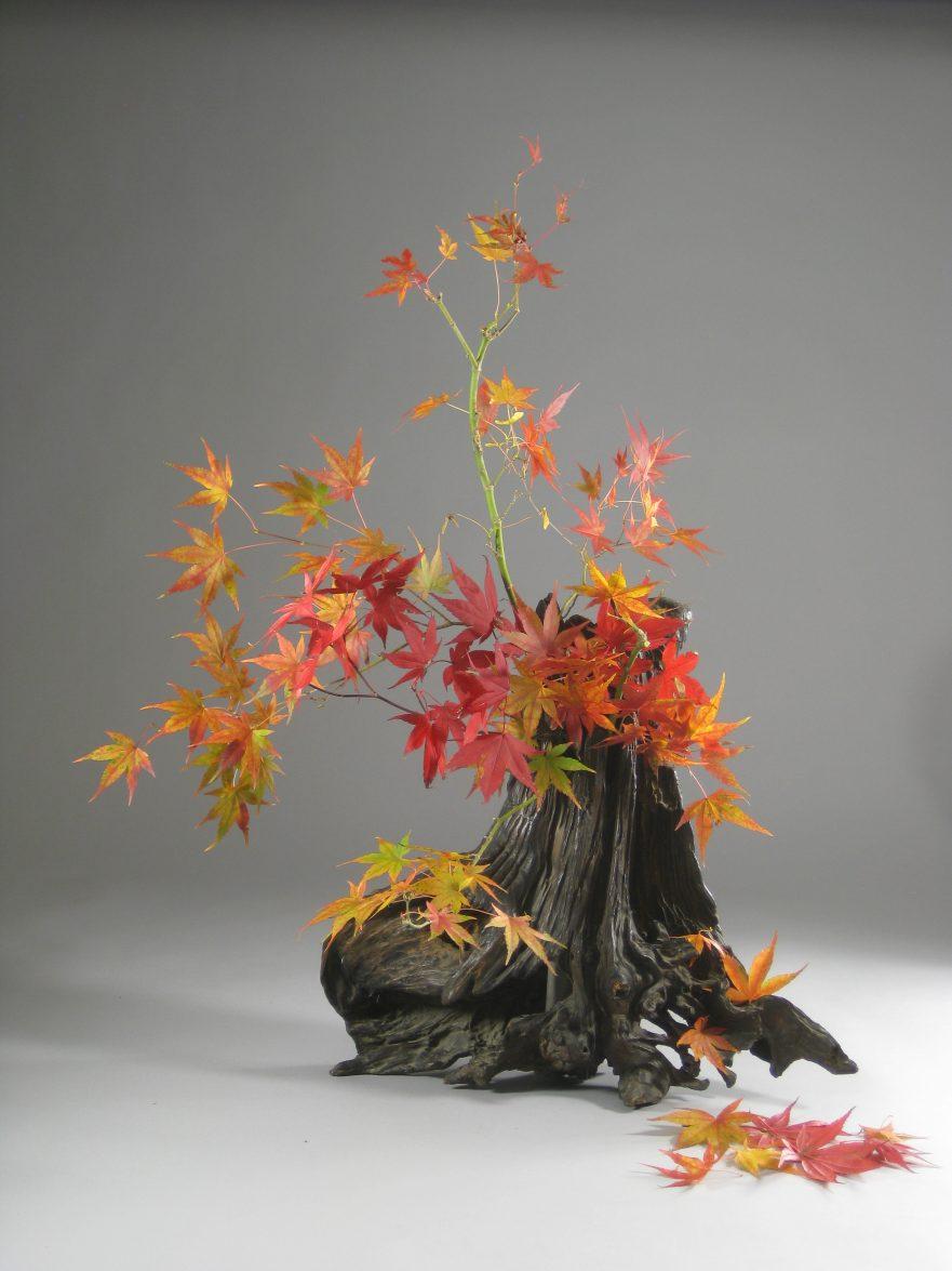 """Ikebana, Sogetsu, """"Metamorphose von Ahorn"""" (von Ayako Graefe)"""