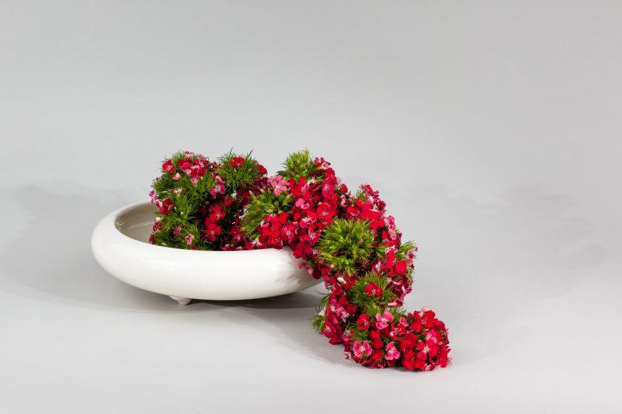 """Ikebana, Sogetsu, abstrakte Werke, """"mit Bartnelken"""" (von Ayako Graefe)"""