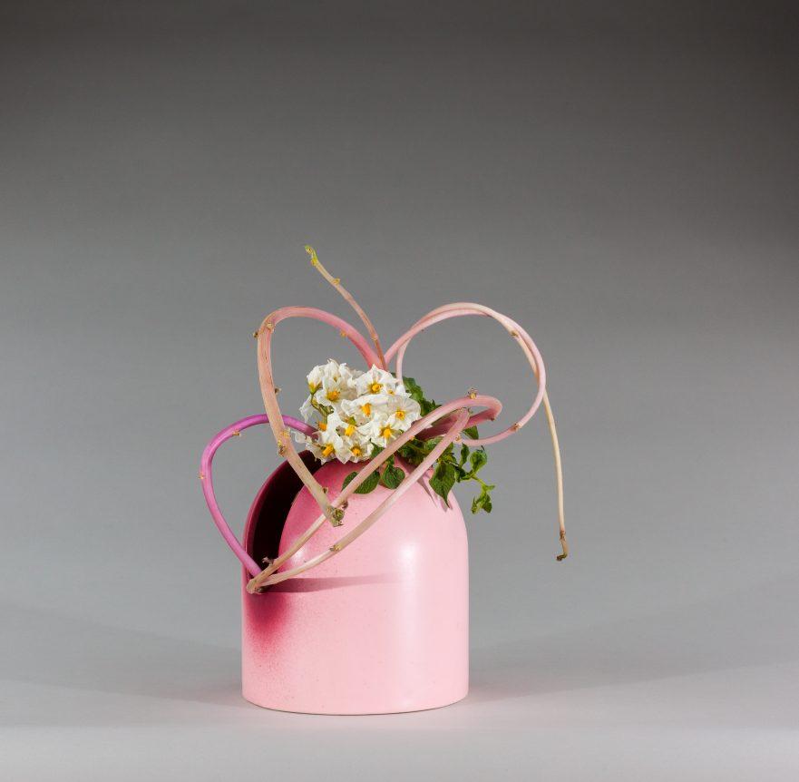 """Ikebana, Sogetsu, Arrangements mit Kartoffeln, """"Mit Blüten, Blättern und Trieben von Kartoffeln"""" (von Ayako Graefe)"""
