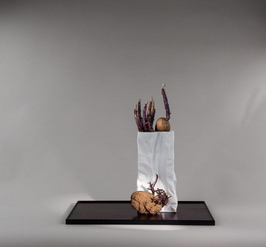 Ikebana, Sogetsu, Arrangements mit Kartoffeln, Treibende Kartoffeln im Tütengefäß von Rosenthal  (von Ayako Graefe)