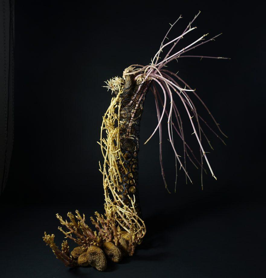 """Ikebana, Sogetsu, Arrangements mit Kartoffeln, """"Magische Welt mit Kartoffeln"""" (von Ayako Graefe)"""