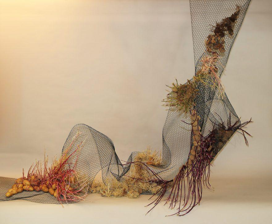"""Ikebana, Sogetsu, Installationen, """"Metamorphose von Kartoffeln"""" (von Ayako Graefe)"""